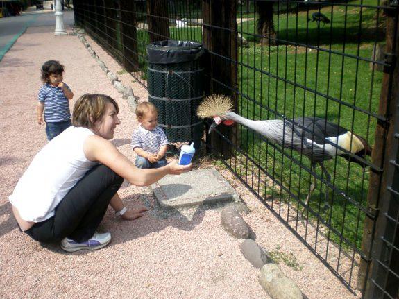 Regalo Speciale Una Giornata Al Parco Zoo